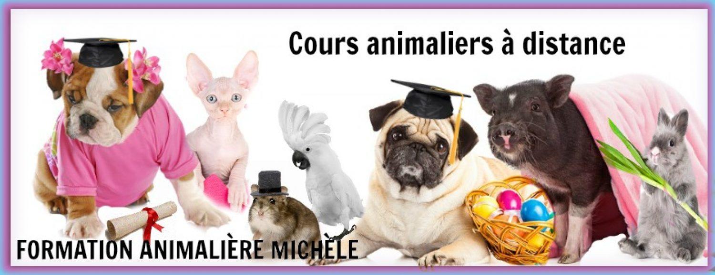 Formation Animalière Michèle